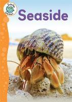 Lynch, Annabelle - Seaside (Tadpoles Learners) - 9781445138558 - V9781445138558