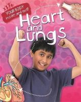 Solway, Andrew - Heart and Lungs (Your Body: Inside & Out) - 9781445138817 - V9781445138817