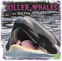Zuchora-Walske, Christine - Killer Whales: Built for the Hunt (First Facts: Predator Profiles) - 9781474701990 - V9781474701990