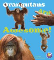 Morey, Allan - Orangutans are Awesome! (A+ Books: Awesome Asian Animals) - 9781474702539 - V9781474702539