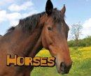 Doyle, Sheri - Horses (Pebble Plus: Farm Animals) - 9781474719056 - V9781474719056