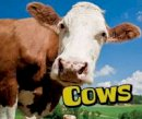 Doyle, Sheri - Cows (Pebble Plus: Farm Animals) - 9781474719148 - V9781474719148