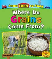 Staniford, Linda - Where Do Grains Come from? (Read and Learn: From Farm to Fork: Where Does My Food Come from?) - 9781474721202 - V9781474721202