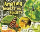 Gaffney, Kelly - Amazing Insects and Spiders (Engage Literacy: Engage Literacy Turquoise - Extension A) - 9781474729604 - V9781474729604