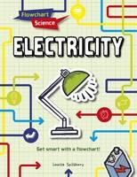 Spilsbury, Louise - Electricity (Flowchart Science) - 9781474731270 - V9781474731270