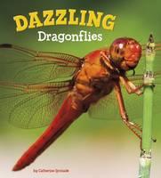 Ipcizade, Catherine - Dazzling Dragonflies (A+ Books: Marvellous Minibeasts!) - 9781474736039 - V9781474736039