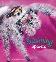 Rustad, Martha E. H. - Stunning Spiders (A+ Books: Marvellous Minibeasts!) - 9781474736053 - V9781474736053