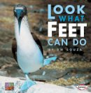 D M Souza - Look What Feet Can Do - 9781580133944 - KRA0000182