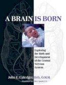 Upledger, John E. - A Brain Is Born: Exploring the Birth and Development of the Central Nervous System - 9781583943014 - V9781583943014