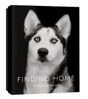 Traer Scott - Finding Home: 12 Notecards & Envelopes - 9781616895228 - V9781616895228