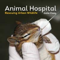 Coey, Julia - Animal Hospital: Rescuing Urban Wildlife - 9781770855717 - V9781770855717