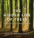 Wohlleben, Peter - The Hidden Life of Trees: The Illustrated Edition - 9781771643481 - V9781771643481