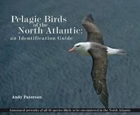 Paterson, Andrew - Pelagic Birds of the North Atlantic - 9781780092287 - KTG0015976