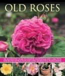 Mikolajski, Andrew - Old Roses - 9781780192413 - V9781780192413