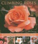 Mikolajski, Andrew - Climbing Roses - 9781780192529 - V9781780192529