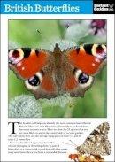 Instant Guides - British Butterflies - 9781780500096 - KHN0001964