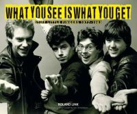 Link, Roland - What You See is What You Get: Stiff Little Fingers 1977-1983 - 9781780730561 - V9781780730561