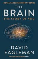 Eagleman, David - The Brain - 9781782116615 - V9781782116615