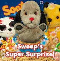 Angie Hicks - Sweep's Super Surprise - 9781782701774 - V9781782701774