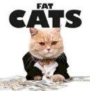 Scratching, Kat - Fat Cats - 9781782744290 - V9781782744290