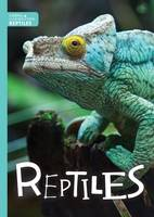 Cavell-Clarke, Steffi - Reptiles (Animal Classification) - 9781786370990 - V9781786370990