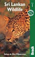 Wijeyeratne, Gehan de Silva - Sri Lankan Wildlife (Bradt Guides) - 9781841621746 - V9781841621746