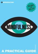Watt, Tessa - Introducing Mindfulness: A Practical Guide - 9781848312555 - V9781848312555