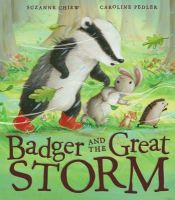 Chiew, Suzanne - Badger and the Great Storm - 9781848690479 - V9781848690479