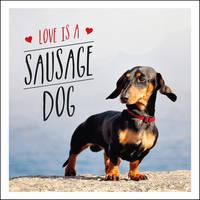 Ellis, Charlie - Love is a Sausage Dog (Gift Book) - 9781849539876 - V9781849539876