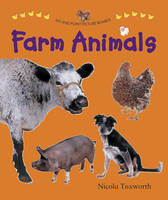 Tuxworth, Nicola - Say and Point Picture Boards: Farm Animals - 9781861474766 - V9781861474766