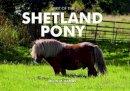 Sands, Heidi M. - Spirit of the Shetland Pony - 9781906887599 - V9781906887599
