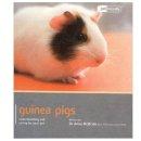 McBride, Anne - Guinea Pig - Pet Friendly - 9781907337031 - V9781907337031