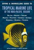 Bergbauer, Matthias - Diving & Snorkelling Guide to Tropical Marine Life of the Indo-Pacific - 9781909612341 - V9781909612341