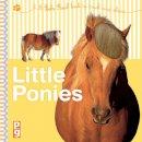 Christiane Gunzi - Feels Real: Little Ponies - 9781909763104 - V9781909763104