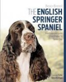 Woodbridge, Celia - The English Springer Spaniel: Your Essential Guide From Puppy To Senior Dog (Best of Breed) - 9781910488072 - V9781910488072