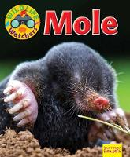 Owen, Ruth - Wildlife Watchers: Mole 2017 (Ruby Tuesday Readers) - 9781911341253 - V9781911341253