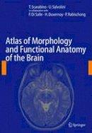 . Ed(s): Scarabino, T. (Casa Sollievo della Sofferenza); Salvolini, U. (Universita Politecnica delle Marche) - Atlas of Morphology and Functional Anatomy of the Brain - 9783642067426 - V9783642067426