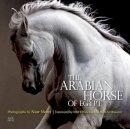 Culbertson, Cynthia - The Arabian Horse of Egypt - 9789774166655 - V9789774166655