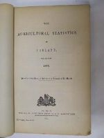 - The Agricultural Statistics of Ireland for the year 1873 -  - KEX0243674